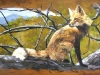 fox, wildlife mural