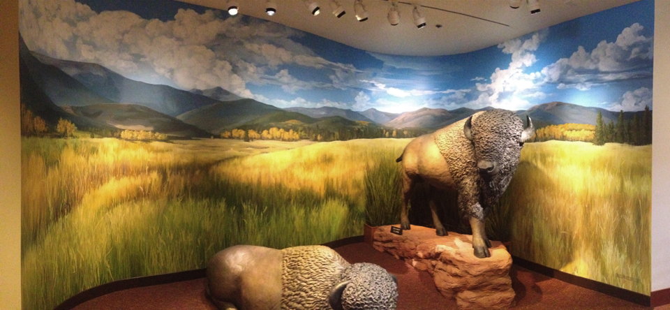 Exhibit Murals - Garden of the Gods